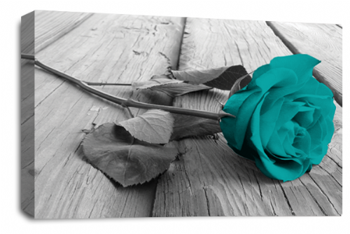 Rose Flower Canvas Wall Art Teal Grey White Floral Picture Print